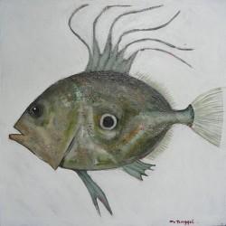 Peinture réaliste poisson Saint-Pierre- 60x60 cm