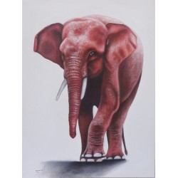 Tableau éléphant pygmée - 120x90 cm