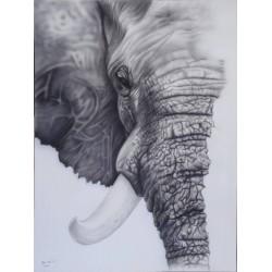 Tableau tête d'éléphant -120x90 cm