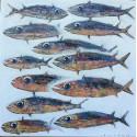 Toile format carré poissons allongés 90x90 cm